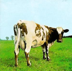 Pink-Floyd atom heart mother